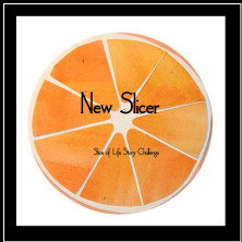 new-slicer-badge